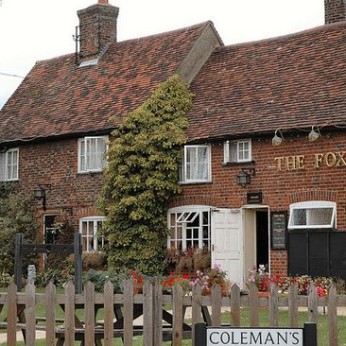 Fox, Pirton
