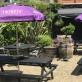 Shortlands Tavern, Shortlands, Bromley (photo 2)
